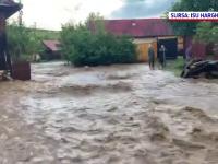 Sute de case, inundate în județul Harghita. Un bătrân a fost salvat de vecini