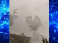 """Fenomene extreme în România. Copaci doborâți, mașini distruse, orașe acoperite de grindină. """"Ăsta e uragan"""""""