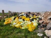 Deşeuri medicale periculoase, aruncate pe un câmp de lângă București. Un bărbat a fost reținut