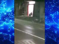 VIDEO. O ursoaică cu trei pui a intrat într-un magazin din Harghita