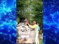 Doi bărbați, prinși în flagrant în timp ce descărcau deșeuri din construcții în albia unui pârâu