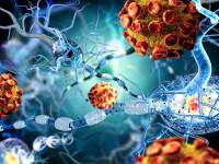 Studiu: Covid-19 ar putea provoaca insuficiență respiratorie și moarte prin afectarea creierului
