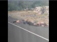 Război brutal între cartelurile de droguri din Mexic. Gropi comune cu sute morți. VIDEO ȘOCANT