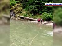 Câine izolat pe malul unui râu din Maramureș, salvat de salvamontiști. Va fi adoptat de femeia care l-a găsit