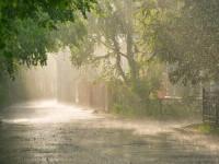 Cod galben de ploi torenţiale şi vijelii în 15 județe. Cum va fi vremea în București
