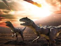 Descoperire inedită despre dinozauri. S-ar fi aflat în declin cu mult timp înainte de impactul dintre Pământ și un asteroid