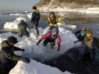 Ghetarul Hokkaido din Japonia, la un pas de a deveni o simpla amintire