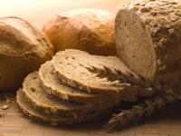 Afacere de succes. Vinde paine veche cu 1 euro. Da si cate 1.500 pe zi