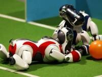 Campionat razboinic intre robotei de 20 de centimetri inaltime, in Japonia