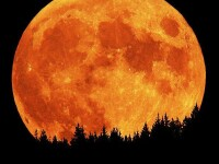 19 martie, ziua Z. Super Luna ar putea produce catastrofe