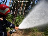Peste 7 hectare de vegetatie au ars intr-un incendiu langa Alba Iulia