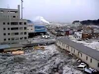 A infruntat tsunamiul din Japonia cu feribotul. A invins moartea