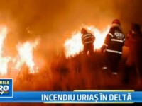 Un nou incendiu in Delta Dunarii. 20 de hectare de vegetatie, distruse langa cetatea Histria