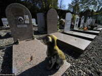 Clujul va avea un cimitir nou. Acesta se va construi in Borhanci