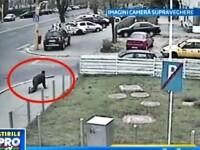Un barbat a lovit o masina in timp ce mergea