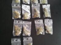 Procurorii DIICOT Sibiu au destructurat o retea de traficanti de cannabis