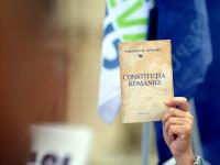 Revizuirea Constitutiei. 10 Mai zi nationala,