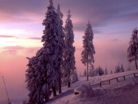 Iarna se intoarce zilele acestea la munte. Vezi unde se poate schia in conditii bune