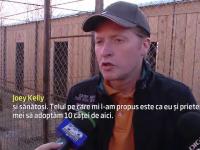 Un fost membru al trupei Kelly Family a venit in Romania pentru a salva maidanezii: \