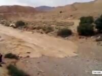 Aparitie neobisnuita in desertul Israelului. Un râu care secase de multi ani reapare intr-o zona biblica. VIDEO