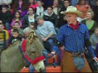 Baschet cu magari in Statele Unite. Ce s-a intamplat la amuzantul eveniment sportiv din New York
