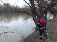 Descoperire socanta facuta de un pescar pe Somes: