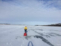 Tibi Useriu conduce Ultramaratonul de la Cercul Polar. Pe ce locuri sunt Vlad Tanase si Andrei Rosu