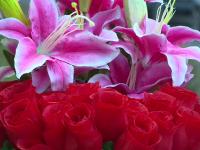 Dezamagire pentru comerciantii de flori din Bucuresti de 8 martie: