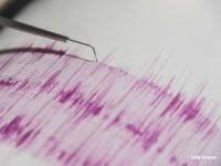 Cutremure în Vrancea şi în Marea Neagră, duminică dimineaţă