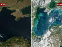Încălzirea globală va produce efecte dramatice pe litoral. NASA și cercetătorii avertizează asupra noilor fenomene