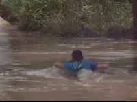 Stare de calamitate din cauza ploilor, într-un oraș australian. Crocodilii au ajuns pe străzi