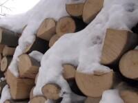 Un tânăr a jefuit un întreg sat, promiţând că aduce lemne. Câţi bani a strâns