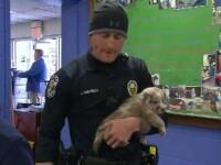 Cățeluș, adoptat de polițistul care l-a salvat