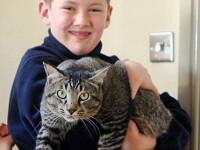 """O pisică s-a întors acasă la 2 zile după ce stăpânii i-au înmormântat """"rămășițele"""". """"E un miracol"""""""