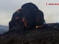 255 de animale arse de vii la o fermă din Buzău, într-un incendiu violent