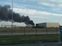 """Incendiu la un depozit de mase plastice, în Oradea: """"Erau flăcări înalte de 5 metri"""""""