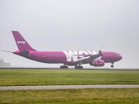 O companie aeriană şi-a încetat activitatea şi a anulat toate zborurile