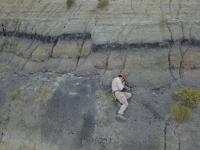 Fosile de 66 de milioane de ani, găsite în SUA. Asteroidul care a distrus 75 % din viață