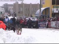 Începe Iditarod, cea mai faimoasă cursă de sănii trase de câini din lume