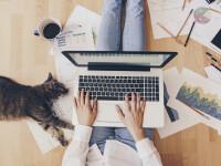 Sfaturi pentru cei care lucrează de acasă. Care sunt recomandările specialiștilor