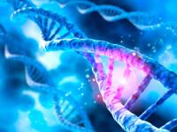 Cercetători: Coronavirusul din Europa a suferit mutații față de cel original