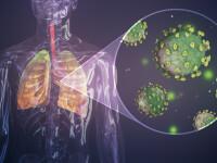LIVE UPDATE. Coronavirus în lume. 793 de oameni au murit în Italia într-o singură zi