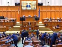 """Deputații dezbat moţiunea simplă pe agricultură depusă de PSD: """"Cel mai periculos dăunător"""""""