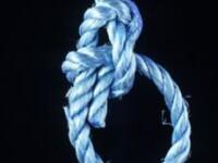 Despartirea de sotie l-a impins la sinucidere
