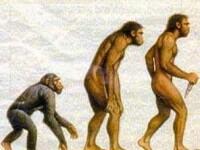 Omul modern a mostenit o parte din ADN-ul Omului de Neanderthal