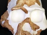 Descoperire senzationala! Primul om de pe Planeta a fost canibal