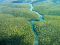 Tribul pierdut al Amazonului. Povestea civilizatiei care a pierdut total contactul cu lumea moderna