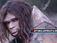 Cea mai mare enigma a istoriei, in sfarsit rezolvata. Cum au disparut oamenii de Neanderthal