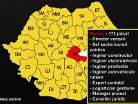 649 de locuri de munca te asteapta doar in Iasi. HARTA joburilor in Romania