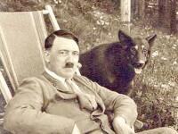 S-au trezit dupa 66 de ani. Orasul natal al lui Hitler i-a retras titlul de cetatean de onoare